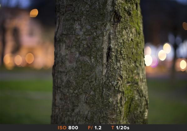 Bokeh5 Canon 50mm f/1.2