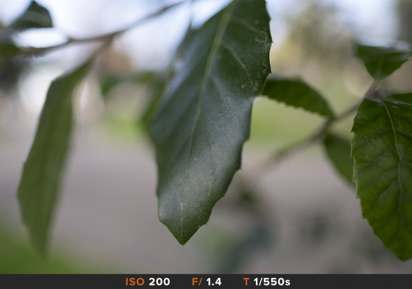 bokeh 2 fuji 16mm