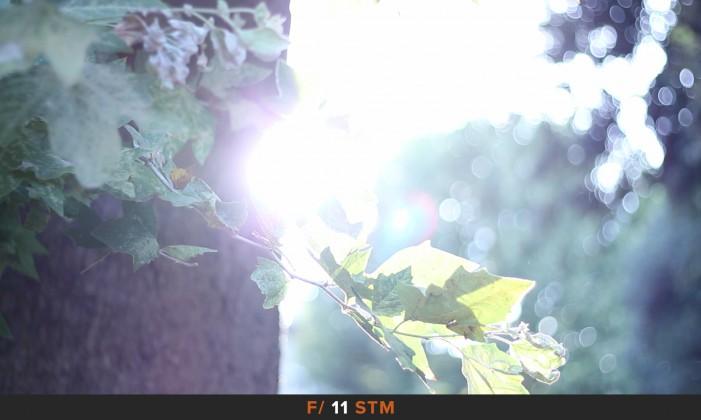 Flares STM f/11 Canon 50mm f/1.8 STM