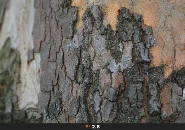Nitidezza f/2.8 Sigma 60mm f/2.8 Art
