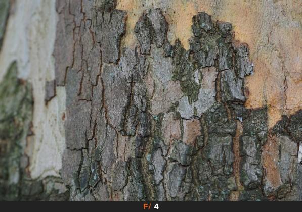 Nitidezza f/4 Sigma 60mm f/2.8 Art