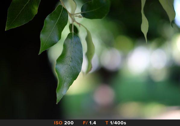 Bokeh 6 FujiFilm 35mm
