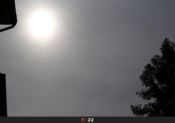 Flares f22 Zeiss Milvus 100mm