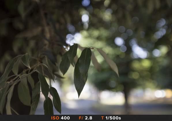 Bokeh 3 Canon 16-35mm f2.8
