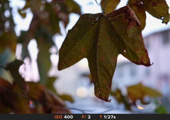 Bokeh 6 FujiFilm 35mm f2