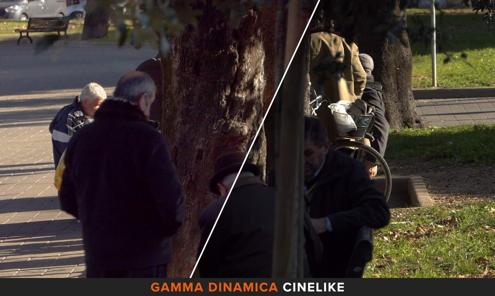 Gamma Dinamica Cinelike Panasonic FZ2000