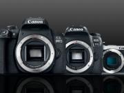 Canon Annuncia le Reflex Eos 800D e 77D e la Mirrorless M6