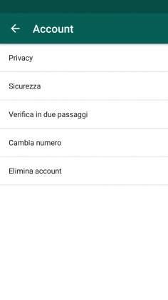 Account verifica in due passaggi Whatsapp