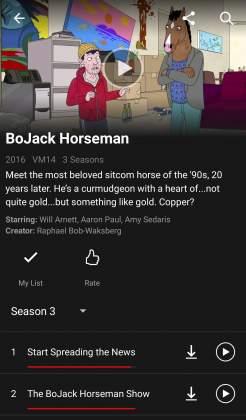 Show Netflix tutorial come scaricare film