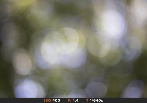 Test Bokeh 7 Sigma 85mm f/1.4 Art