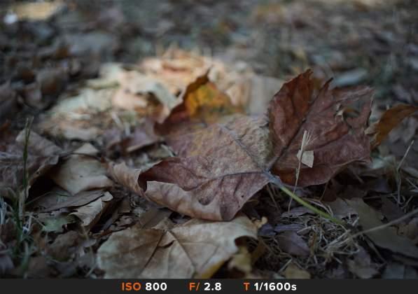Test Bokeh 3 Samyang af 35mm f2.8 FE