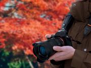 10 consigli su come fotografare le foglie d'autunno