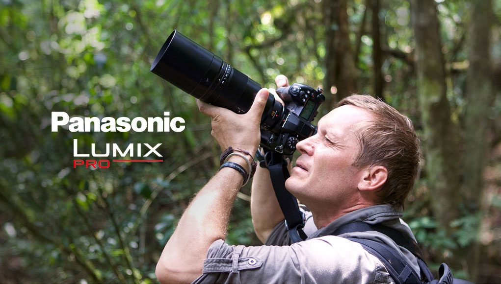 Panasonic Lumix Pro, il servizio d'assistenza gratuito per i professionisti